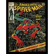 Spider-Man - 100th Anniversary Framed 30 x 40cm Print