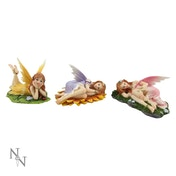 Floral Slumbers (Pack Of 3) Fairy Figures