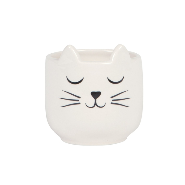 Sass & Belle Mini Cat's Whiskers Planter