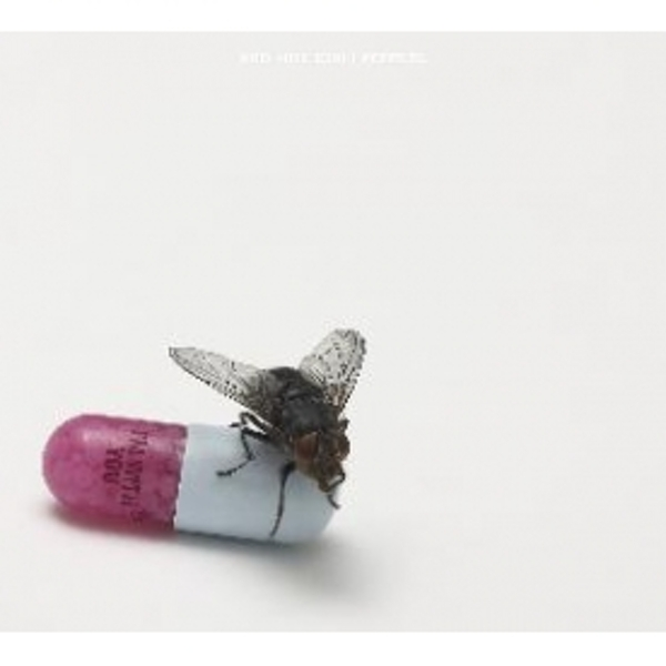 Red Hot Chili Peppers - I'm With You CD