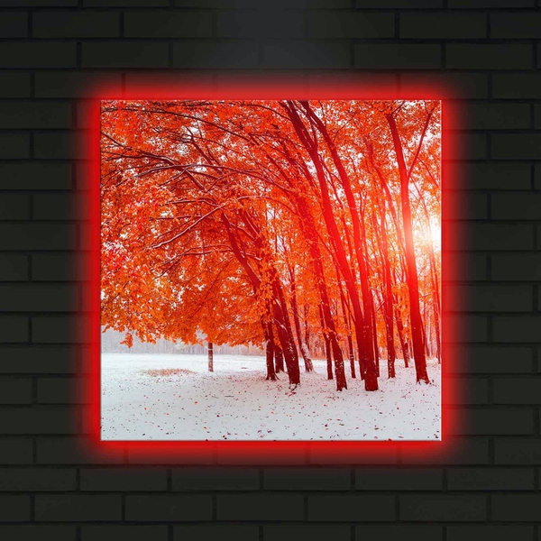 4040DACT-14 Multicolor Decorative Led Lighted Canvas Painting