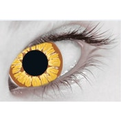 Golden Vampire 1 Month Halloween Coloured Contact Lenses (MesmerEyez XtremeEyez)