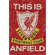 Liverpool Mosaic This is Anfield Poster