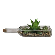 3 Assorted Faux Succulents In A Glass Bottle