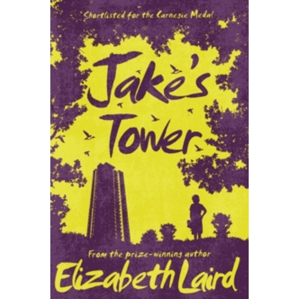Jake's Tower by Elizabeth Laird (Paperback, 2017)