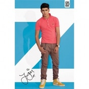 One Direction Zayn Maxi Poster (Standing)