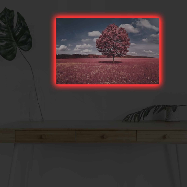 4570DHDACT-001 Multicolor Decorative Led Lighted Canvas Painting