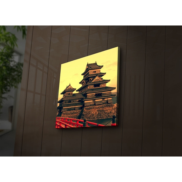 4040?ACT-26 Multicolor Decorative Led Lighted Canvas Painting