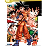 Dragon Ball Collage Mini Poster