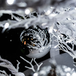100pc Baubles Pack | Pukkr Silver - Image 5