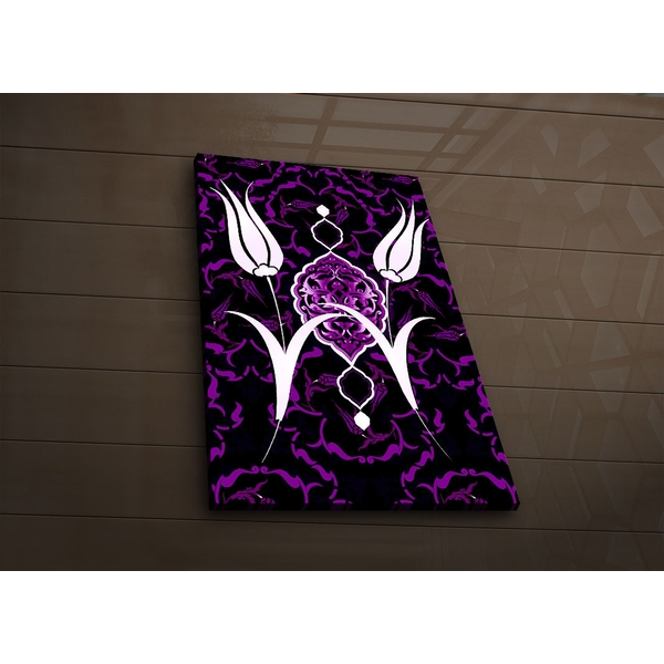 4570?ACT-58 Multicolor Decorative Led Lighted Canvas Painting