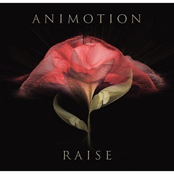 Animotion - Raise Your Expectations Vinyl