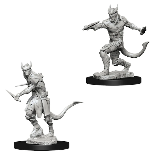 Dungeons & Dragons Nolzur's Marvelous Unpainted Miniatures (W5) Tiefling Male Rogue