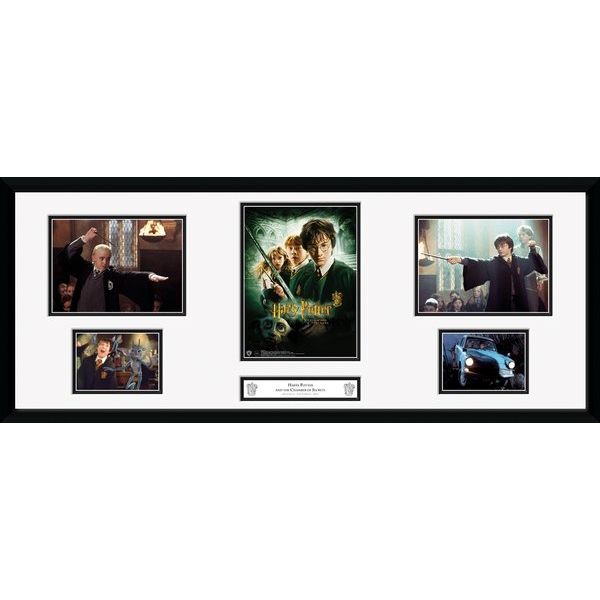 Harry Potter Chamber Of Secrets Storyboard Collector Print