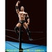 The Rock (WWE) Bandai Tamashii Nations Figuarts Figure - Image 3