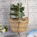 Two Tier Hanging Seagrass Planter | M&W - Image 6