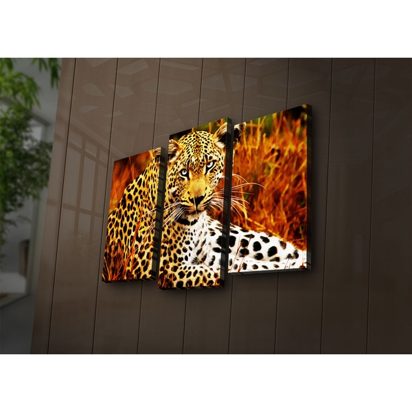 3PAT?ACT-24 Multicolor Decorative Led Lighted Canvas Painting (3 Pieces)