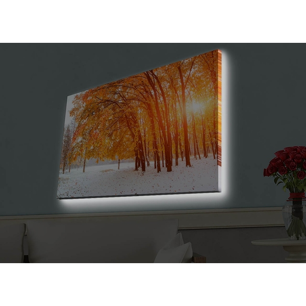 4570HDACT-044 Multicolor Decorative Led Lighted Canvas Painting