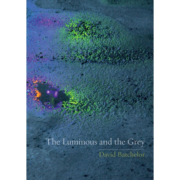 The Luminous and the Grey by David Batchelor (Paperback, 2014)