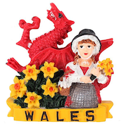 Welsh Lady with Dragon Magnet Pack Of 12