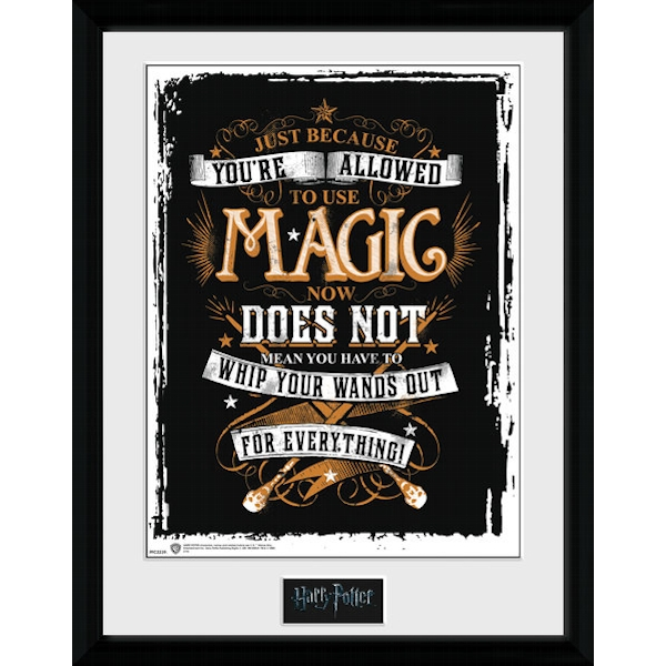 Harry Potter Wands Out Collector Print