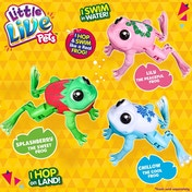 Little Live Pets Lil' Pet Frog Toy
