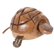 Nodding Turtle