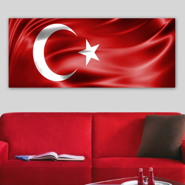 YTY103599822825_50120 Multicolor Decorative Canvas Painting