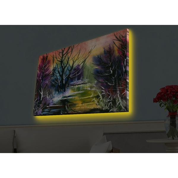 4570HDACT-059 Multicolor Decorative Led Lighted Canvas Painting