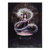 19 x 25cm The Summoning Canvas Plaque By Anne Stokes