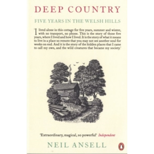 Deep Country: Five Years in the Welsh Hills by Neil Ansell (Paperback, 2012)