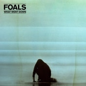 Foals - What Went Down Deluxe CD+DVD