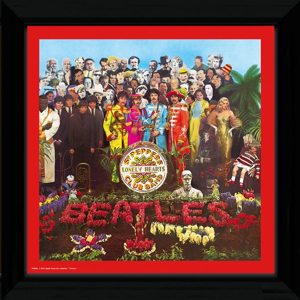 The Beatles Sgt Pepper Framed Album Cover
