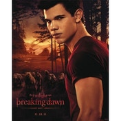 Neca - Twilight B/d - Jacob And Wolfpack Mini Poster