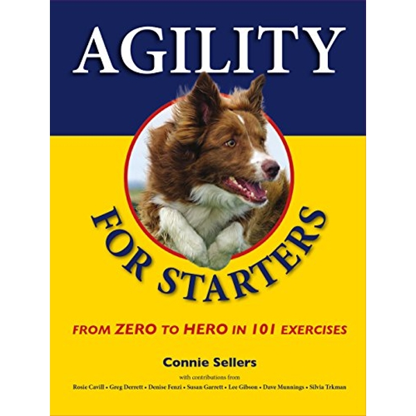 Agility for Starters: From Zero to Hero in 101 Exercises by Connie Sellers (Paperback, 2016)