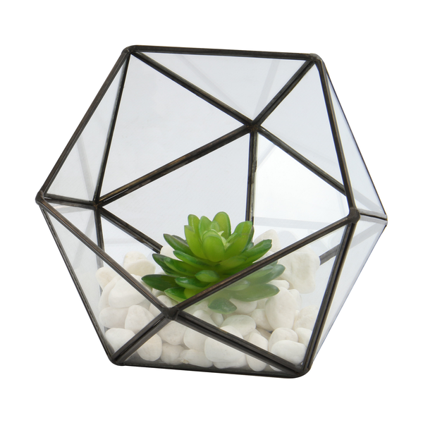 Half Ball Glass Terrarium | M&W