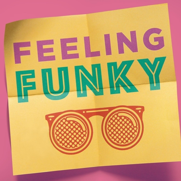 Various Artists -Feeling Funky CD