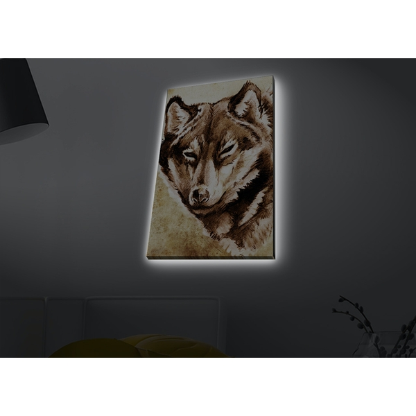 4570MDACT-047 Multicolor Decorative Led Lighted Canvas Painting