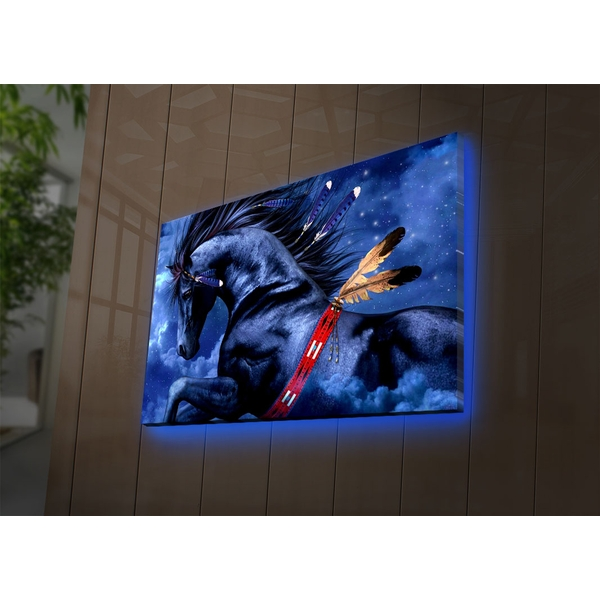 4570NTVDACT-2 Multicolor Decorative Led Lighted Canvas Painting