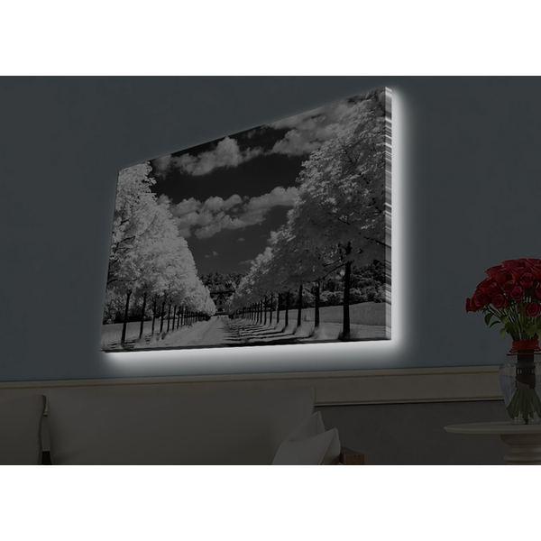 4570HDACT-029 Multicolor Decorative Led Lighted Canvas Painting