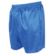 Precision Micro-stripe Football Shorts 30-32 inch Royal Blue
