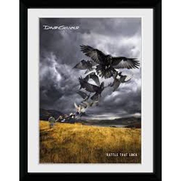 David Gilmour - LP Cover Collector Print