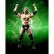 Triple H (WWE) Bandai Tamashii Nations Figuarts Figure - Image 3