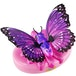 Little Live Pets -  Lil Butterfly (1 At Random) - Image 2