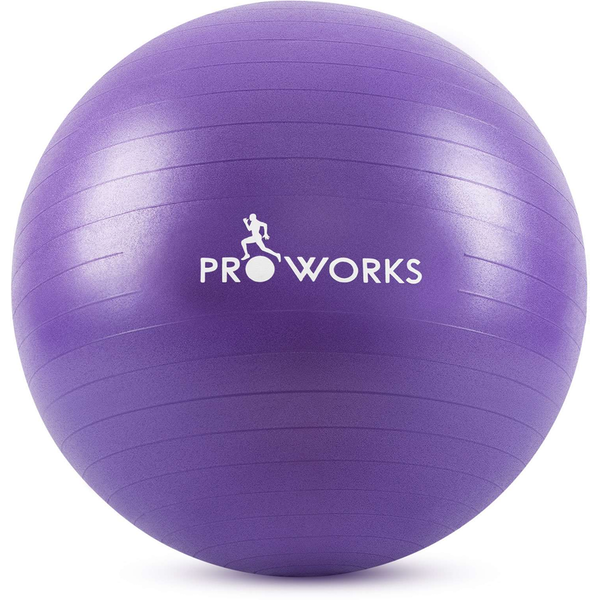 Proworks Gym Fitness Ball (55cm) - Purple