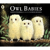 Owl Babies by Martin Waddell (Paperback, 1994)
