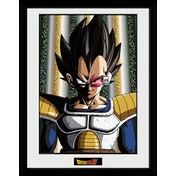 Dragon Ball Z Vegeta Framed Collector Print