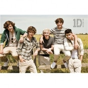 One Direction Summer Maxi Poster