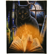 Small Bewitched Canvas Picture by Lisa Parker