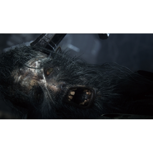 Bloodborne Game Of The Year (GOTY) PS4 Game - Image 2